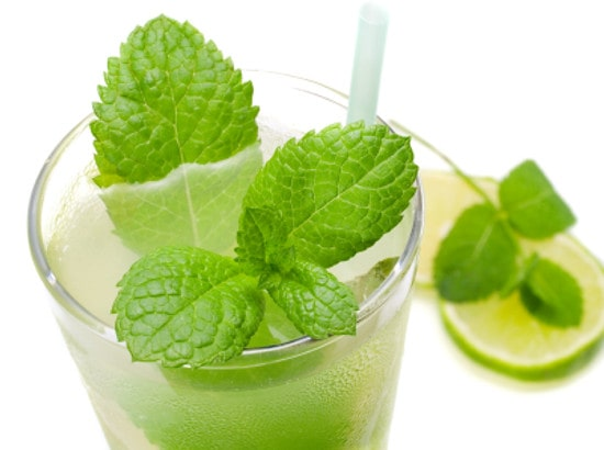 The Best Mojito Cocktail